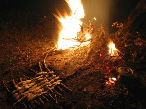 Cooking fish on a wooden grill by the campfire.