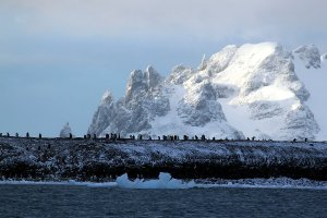 Our first view of the land at the South Shetland Islands.