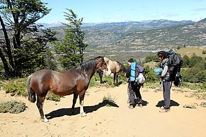 Horses on the trail when hiking down.